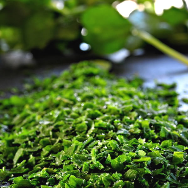 Freshly Frozen IQF Herbs and Spices - Bowlander UK